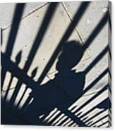 Captured Shadow Canvas Print