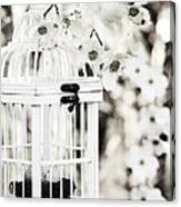 Captured Spring In Black And White Canvas Print