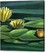 Card Of Frog With Lily Pad Flowers Canvas Print