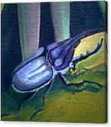 Card Of Nosey Bug Canvas Print