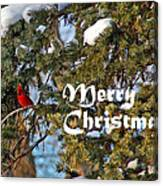 Cardinal Christmas Card Canvas Print