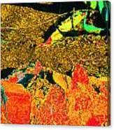 Carlos Visits Don Juan In The Desert Canvas Print