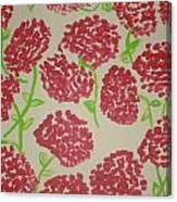 Carnation Field Canvas Print