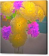 Carnation Glow Canvas Print
