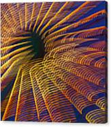 Carnival Abstract Lights Canvas Print