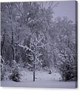 Carolina Snowfall Canvas Print