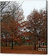 Carpeted Canvas Print