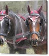 Carriage Horses Pleasure Pair Canvas Print
