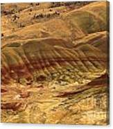 Carroll Rim Painted Hills Canvas Print