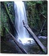 Rainforest Waterfall Cascades Canvas Print