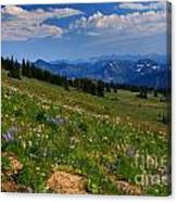 Cascades And Wildflowers Canvas Print