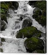 Cascades Below Canvas Print