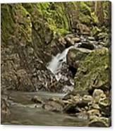 Cascades Happy Trail 9128 Canvas Print