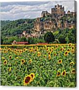 Castle In Dordogne Region France Canvas Print