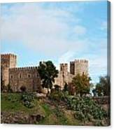 Castle In Sunlight Canvas Print