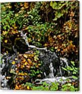 Casual Creek Canvas Print
