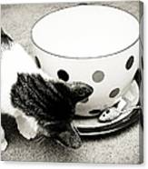 Cat And Mouse Coffee Canvas Print