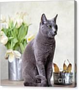Cat And Tulips Canvas Print