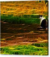 Cat In A Strange Place Canvas Print