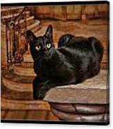 Cat On Pillar Canvas Print