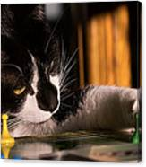Cat Playing A Game Canvas Print