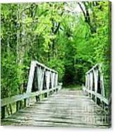 Catalpa Plantation Bridge Canvas Print