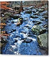 Catoctin Stream Canvas Print