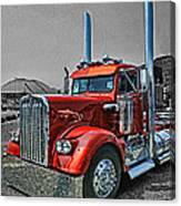 Catr0395-12 Canvas Print