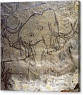 Cave Art - Mammoth And Ibexes Canvas Print