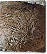 Cave Art: Incised Rock Canvas Print