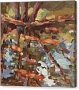 Cedar Creek Reflection Canvas Print
