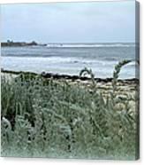 Celadon Seascape Canvas Print