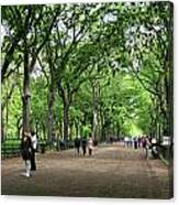 Central Park Arbor Walk Spring Canvas Print