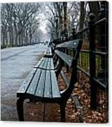 Central Park Bench Canvas Print