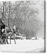 Central Park In Falling Snow Canvas Print