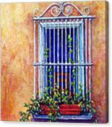Chair In The Window Canvas Print