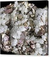 Chalcopyrite And Quartz Crystals Canvas Print
