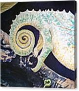 Chameleon Tail Canvas Print