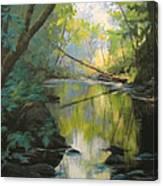Champagne Creek Canvas Print