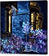 Chelsea Row At Night Canvas Print