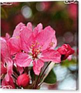 Cherry Blossom Greeting Card Blank With Decorations Canvas Print