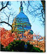 Cherry Blossoms And Capital Dome Canvas Print