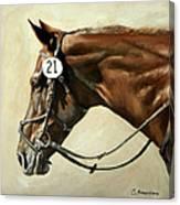 Chestnut Canvas Print