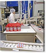 Chewing Gum Factory Canvas Print