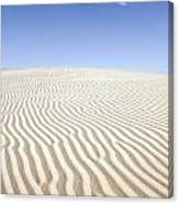 Chihuahuan Desert Dunes Canvas Print