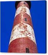Chincoteague Lighthouse Canvas Print