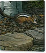 Chipmunk Canvas Print