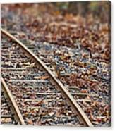 Chipmunk On The Railroad Track Canvas Print