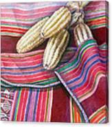 Choclos Entre Aguayos Canvas Print