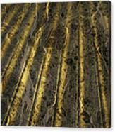 Chocolate Steel Canvas Print